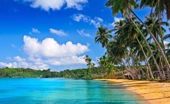 Barbados Turu