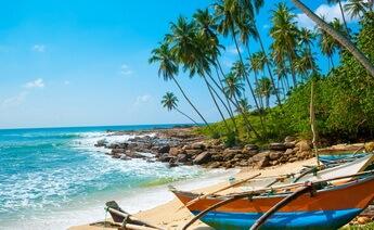 Sömestr Sri Lanka Turu