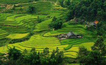 Sabiha Gökçenden Vietnam Turu