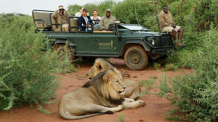 Ramazan Bayramı Kenya Safari Turu