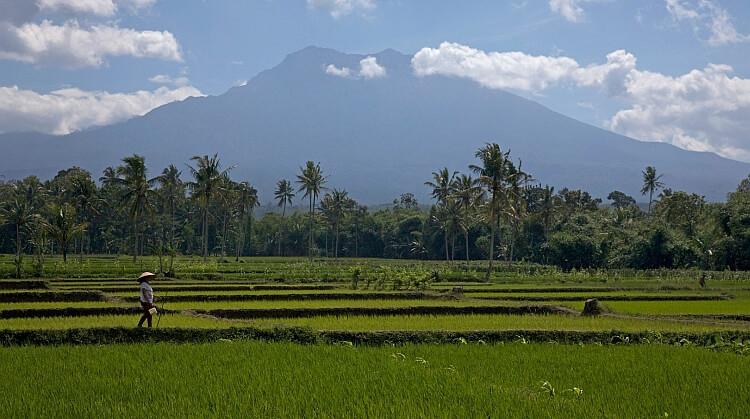 Yılbaşı Endonezya Turu