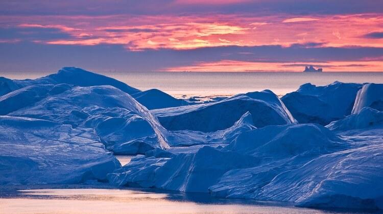 Kuzey Kutbu Turu