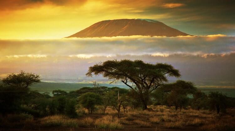 Kilimanjaro Dağı Tırmanışı Turu
