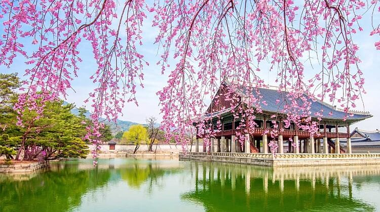 Güney Kore Turu