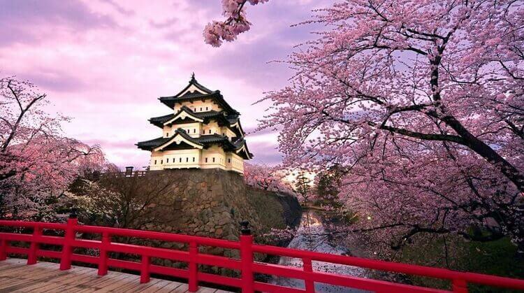 Ramazan Bayramı Japonya-Kore Turu