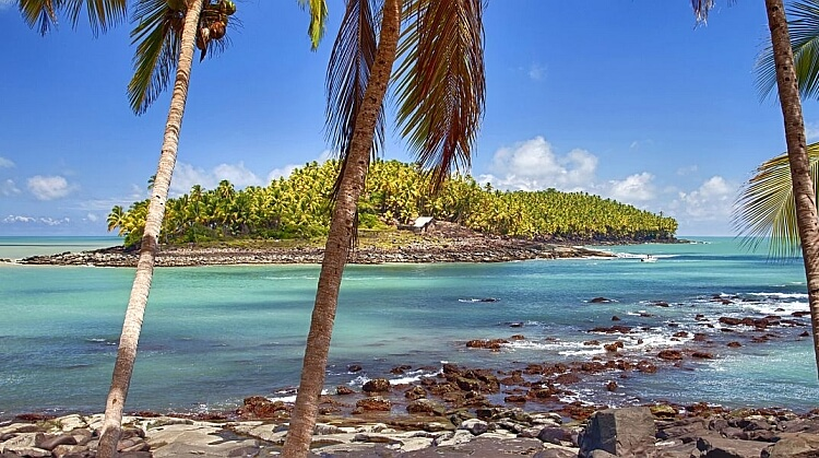 Surinam Guyana Fransız Guyanası Turu