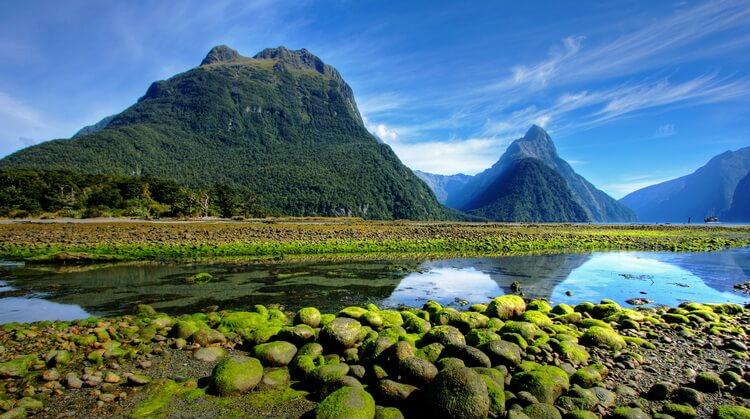 Sömestr Avustralya Yeni Zelanda Tazmanya Turu