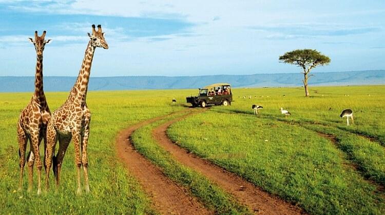 Kurban Bayramı Kenya Safari Zanzibar Turu