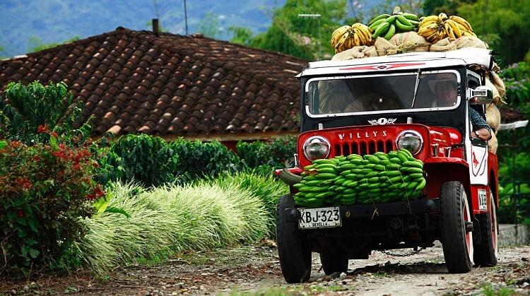 Sömestr Peru Kolombiya Panama Turu