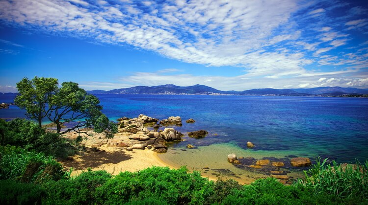 Korsika Turu