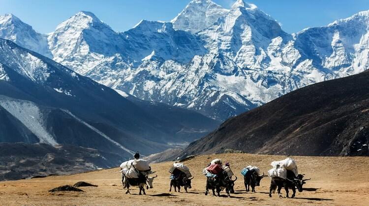 Everest Ana Kamp Trekking Turu